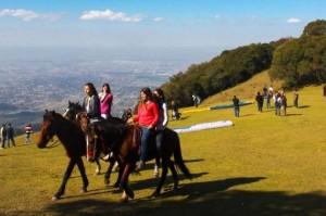 tucuman garden park paisajes